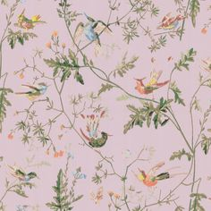 Son > A Collection of Flowers > Cole and Son Humming Birds 1003 - Bird wallpaper canada store Wallpaper Canada, Wallpaper Online, Hummingbird Wallpaper, Boutique Wallpaper, Cole Son, Cole And Son Wallpaper, Nursery Night Light, Color Lila, Bird Silhouette