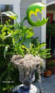 "One of the easiest Halloween crafts I've ever made has to be the ""Man Eating Monster Plant"" I presented on the Home & Family Show recently. This Halloween plant cr…"