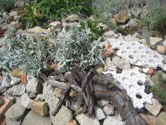 Fundstücke im Garten Indoor Plants, Firewood, Crafts, Outdoor, Lawn And Garden, Inside Plants, Outdoors, Woodburning, Manualidades
