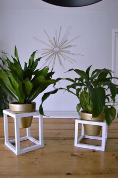 Neutral modern brass plant stand tips for 2019