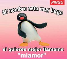 No tengo vida kok kok solo veo memes kok kok me quiero morir kok kok. Memes Amor, Memes Estúpidos, Cute Memes, Stupid Memes, Funny Spanish Memes, Spanish Humor, Pingu Memes, Memes Lindos, Tumblr Love