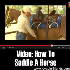 A saddle can protect riders from falling, but if placed improperly, it can be detrimental to the physique and overall health condition of horses. But how do you actually saddle a horse? Check the video for a great tutorial.