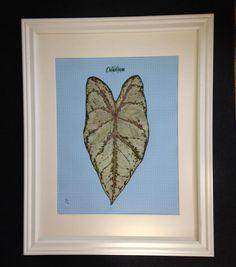 LG Framed Pressed Botanical  HandTinted by MyStoningtonGarden, $80.00