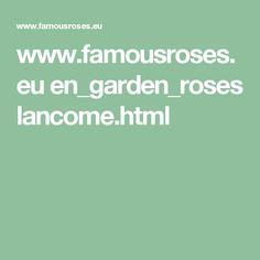 www.famousroses.eu en_garden_roses lancome.html
