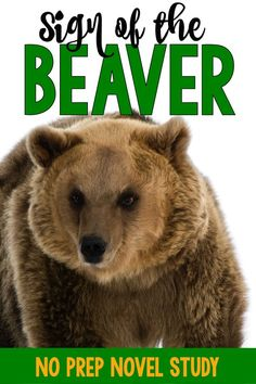 Sign of the Beaver n
