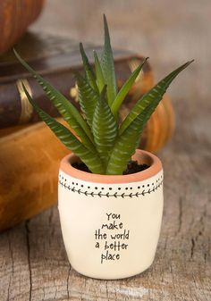 Tiny faux succulents and heartfelt sentiments bring warmth and life into any space! They seriously make the perfect gift! Succulent and container combinations are sold as is. Painted Plant Pots, Painted Flower Pots, Pots D'argile, Clay Pots, Cacti And Succulents, Planting Succulents, Decorated Flower Pots, Decoration Plante, Succulent Gifts