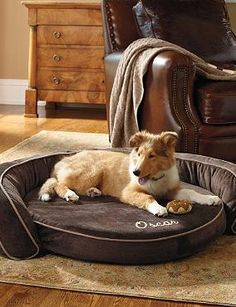 Give your pet a luxuriously comfortable place to lay and relax with the Cool Gel Memory Foam Pet Bed that keeps a perfect balance of warmth and coolness.