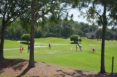 TPC Tampa Bay - Junior Golf Camp