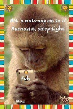 Net 'n wats-aap om te sê koenaait, sleep tight Good Night Blessings, Good Night Wishes, Good Morning Good Night, Good Night Quotes, Birthday Wishes For Mother, Afrikaanse Quotes, Goeie Nag, Special Quotes, Sleep Tight