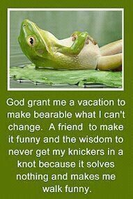Gotta love this cute little frog - and he's smart too!