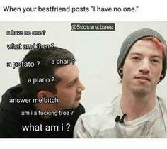 """Cuando tu mejor amigo dice: """"no tengo a nadie"""" : U have no one? What am i then? Una patata? Una silla? Un piano? Respondeme, perra. Soy un estúpido árbol? Quien soy yo?? xD meme~"""