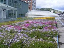 Columbia Green, the Portland-based green roof technology company, has won a Innovation in Sustainability Award (in the Natural Environment Category) from Sustainable Business Oregon (SBO). (http://livingarchitecturemonitor.com/index.php/news/allnews/280-columbia-green-wins-sbo-innovation-in-sustainability-award) | #green #roof #greenroof #sustainability #eco #sustainable #award