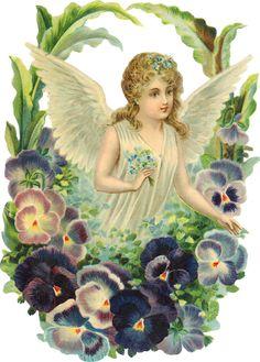 Glanzbilder - Victorian Die Cut - Victorian Scrap - Tube Victorienne - Glansbilleder - Plaatjes : Engel - Angel- Ange