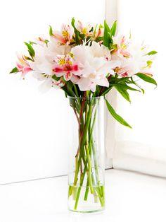 Corinne: Delicado arreglo de astromelias y peonias en florero de vidrio.