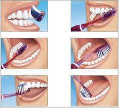 Técnica de cepillado Con cuidado, puedes gozar de una dentadura sana muchos años.