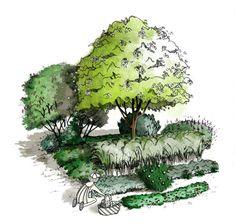 Ici illustrée, la guilde du pêcher, un bel exemple d'associations de végétaux en permaculture pour créer une forêt comestible et cultiver son abondance !