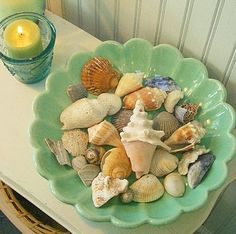 shells in beautiful dish
