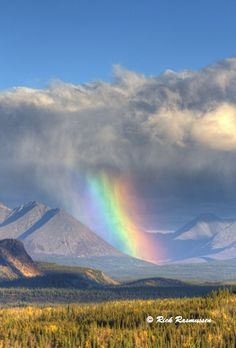'Rainbow' - photo by Rick Rasmussen