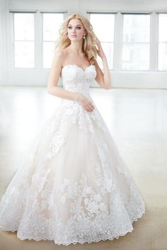 a337ee0d7b9 Madison James Bridal MJ354 Madison James Bridal by Allure Seng Couture  Dream Wedding Dresses