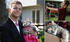 Meet the teen who took his CAT to prom