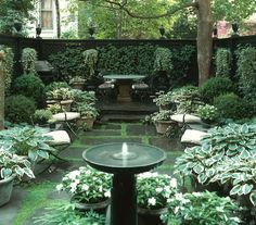 Sawyer Berson Townhouse Garden On Perry StreetLaurel Bern: Beautiful urban gardens. Sawyer Berson Townhouse Garden On Perry Street White Gardens, Small Gardens, Outdoor Gardens, Courtyard Gardens, Courtyard Ideas, Courtyard Design, Front Courtyard, Jardin Zen Miniature, Townhouse Garden