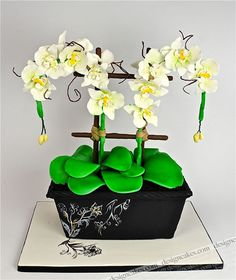 Orchid pot cake by Design Cakes