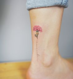 . Carnation .