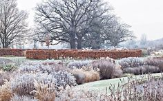 winter in Wisley Garden (an RHS garden), in Woking, Surrey, England
