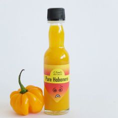 Pure Habanero Hot Chili Sauce Mit 60% Fruchtanteil | C-Food Chili Sauce, Hot Sauce Bottles, Stuffed Peppers, Pure Products, Food, Whitewash, Caribbean, Easy Meals, Stuffed Pepper