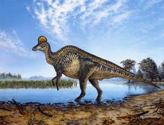 """Corythosaurus"", by Michael Skrepnick."
