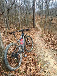 200+ Mile Review Trek Top Fuel 8 #trekbike #trek #trektopfuel #cycling