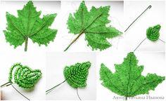 Ready grape leaf