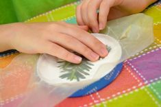 "Make ""Fossils"" – A little air-dry clay can make some interesting fossils with branches, shells, and leaves"