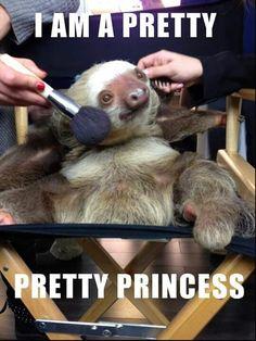 Funny Sloth Memes Hilarious - Koala Funny - Funny Koala meme - - This is hilariousisnt it?laugh and laugh with this funny sloth memes. click this pin for more. The post Funny Sloth Memes Hilarious appeared first on Gag Dad. Koala Meme, Funny Koala, Cute Sloth, Cute Funny Animals, Cute Baby Animals, Funny Cute, Funny Sloth, Funny Humor, Funny Animal Memes