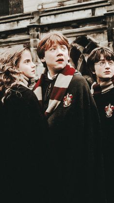 Harry Potter Tumblr, Harry Potter Hermione, Harry Potter World, Ron Weasley, Images Harry Potter, Mundo Harry Potter, Harry Potter Icons, Harry James Potter, Harry Potter Characters