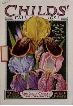 Iris. John Lewis Childs, Inc. (1892). Fall bulbs that bloom plants that please, berries that bear.