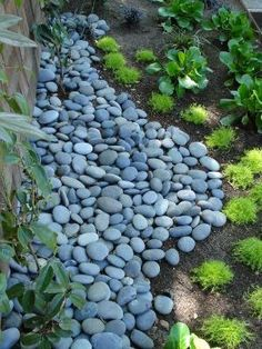 Asian Landscape Design, Pictures, Remodel, Decor and Ideas - page 15 by meredith Landscaping With Rocks, Front Yard Landscaping, Landscaping Ideas, Mulch Landscaping, Asian Landscape, Landscape Design, Contemporary Landscape, Garden Yard Ideas, Lawn And Garden