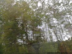 In viaggio in macchina tra la Liguria e il Piemonte