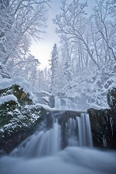 Winter dream - null