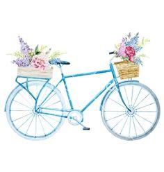 Watercolor bike bicycle with flower basket vector - by Zenina on VectorStock®