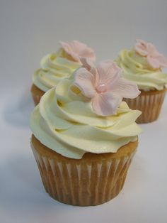 Cupcakes Bakery & Deli - Home Brownie Frosting, Cupcake Frosting, Brownie Cake, Cupcake Cakes, Cup Cakes, Cupcake Wrappers, Brownies, Pretty Cupcakes, Beautiful Cupcakes
