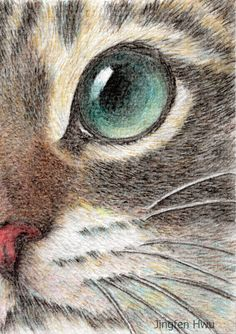 drawing cat art innocent cat eye by JingfenHwu, tabby  cat, striped cat, cat face, #jingfenhwu