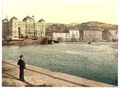 Fiume [Rijeka] harbor, Croatia. 1890-1900. Library of Congress.