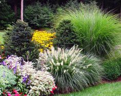 Wonderful Evergreen Grasses Landscaping Ideas 53 image is part of 100 Wonderful Evergreen Grasses Landscaping Ideas gallery, you can read and see another amazing image 100 Wonderful Evergreen Grasses Landscaping Ideas on website Evergreen Landscape, Landscape Borders, Landscape Design, Privacy Landscaping, Front Yard Landscaping, Landscaping Ideas, Landscaping With Grasses, Landscaping Company, Garden Shrubs