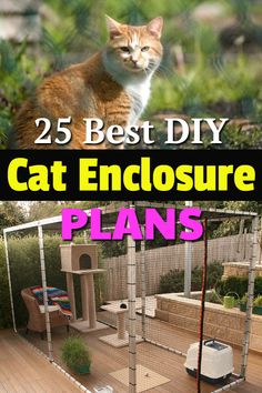 25 Best DIY Cat Enclosure Plans & Ideas Here& some of the best DIY Cat Enclosure Plans and Ideas that will allow your cat to enjoy a safe and fun-filled outdoor time. Indoor Cat Enclosures, Diy Cat Enclosure, Outdoor Cat Enclosure, Outdoor Cat Run, Outdoor Cat House Diy, Catio Ideas For Cats, Cool Diy, Cat Exercise, Cat Tunnel