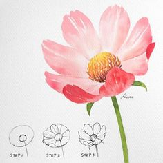 Flower Drawing Tutorials, Flower Art Drawing, Painting & Drawing, Beautiful Flower Drawings, Flower Designs For Painting, Flower Drawings With Color, Easy Flower Drawings, Flower Sketches, Floral Drawing