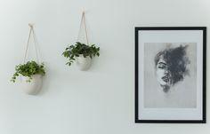 Heinässä heiluvassa: Viherkasvit seinällä