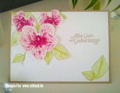 stampin 2017 orchideenzweig orchid climbing orchid Orchidee birthday Card