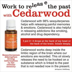 Release the Past with Young Living Cedarwood Essential Oil. Go to my website for a free report on Essential Oils! Mmmm....you gotta love Cedarwood!