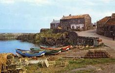 Picture of Craster, Harbour View What A Beautiful World, Beautiful Places, Beautiful Pictures, Northumberland Coast, North East England, English Village, Ireland Landscape, Newcastle, Great Places